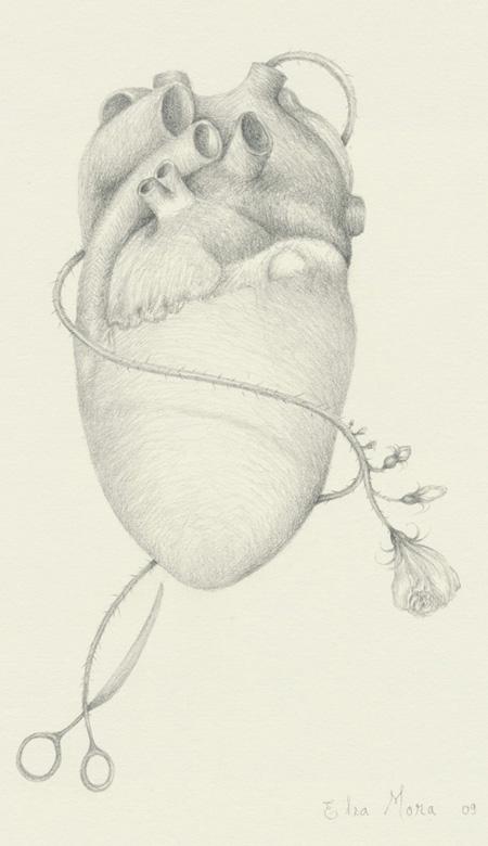 Heart (detail)