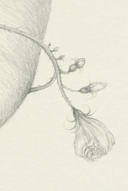 Heart (detail2)