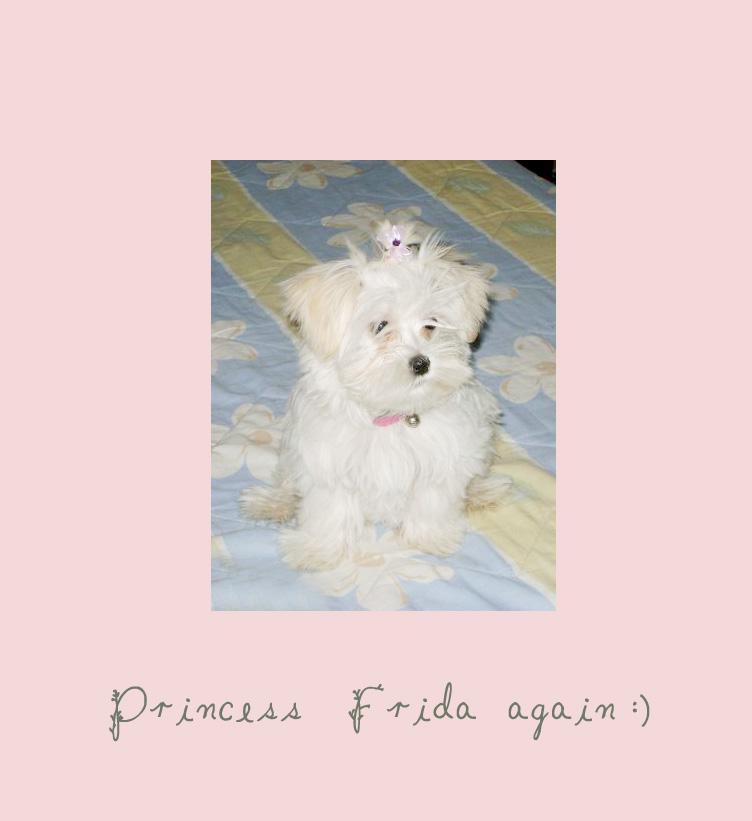 Frida again