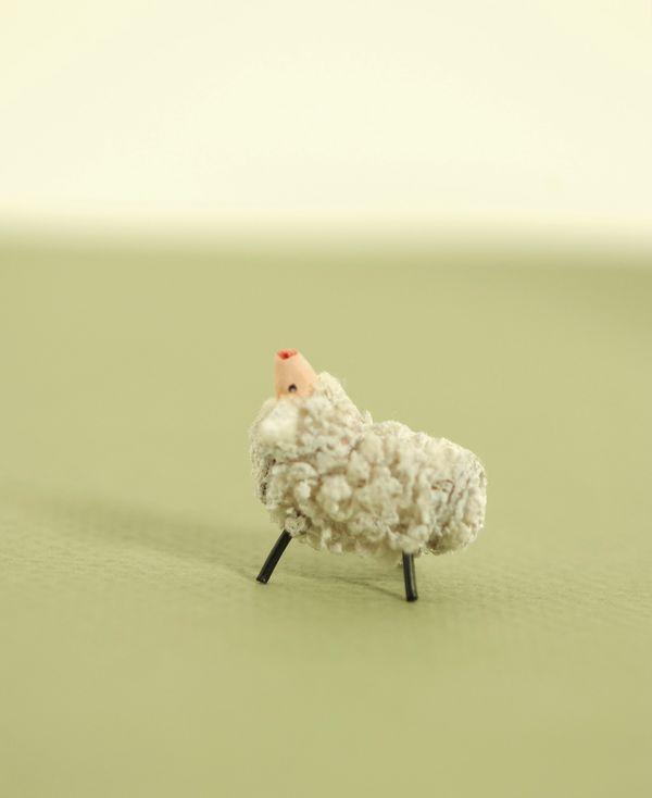 Lamb small