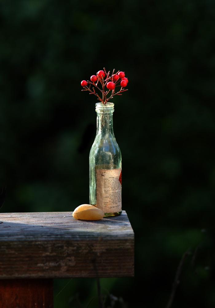 Bottle copy
