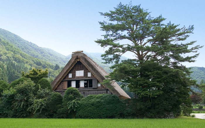 Japan-travels