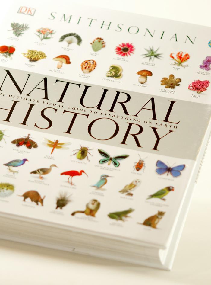 Big animal book small