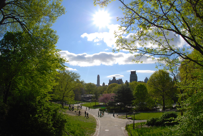 Central-park-jewel-in-the-sky