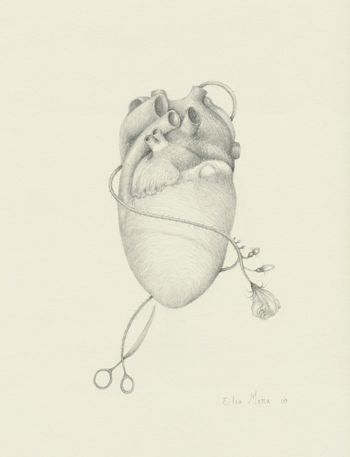 Heart (drawing)