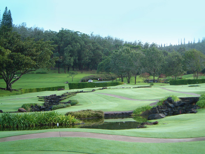 Campo Golf 1