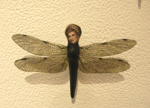 Diana_butterfly